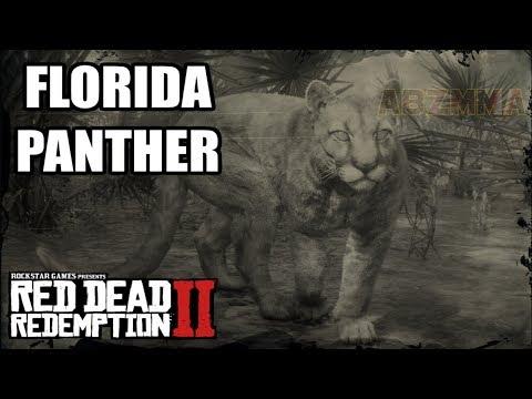 Red Dead Redemption 2 - Florida Panther Location - смотреть
