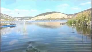 Рыбалка на озере гасфорт
