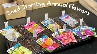 How to Start Annual Flowers from Seed Indoors - Home Gardening