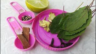 Immunity Booster Tea | Herbal Tea | Healthy Tea