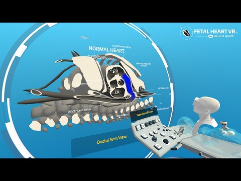 Fetal Heart VR trailer