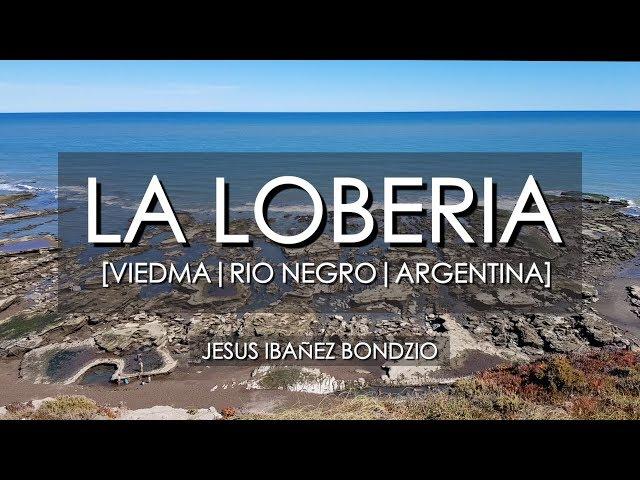 La Lobería, Rio Negro, Argentina
