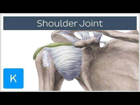 Semne și tratament al entorsei genunchiului