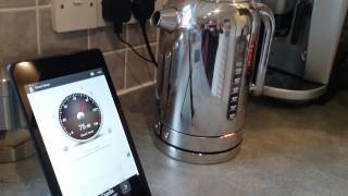 Dualit classic kettle review