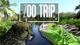 Giraffe Feeding and Lots of Scaly Boiz | Florida 2018 Trip, Zoo Vlog!