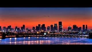 Jan Hammer   Crockett's Theme (Miami Vice) [ANMO Remix]
