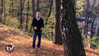 preview picture of video 'Jastrzębie-Zdrój wczoraj i dziś odc. 3'