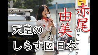 衆議院選挙2017日本のこころ赤尾由美街頭演説2017年10月18日