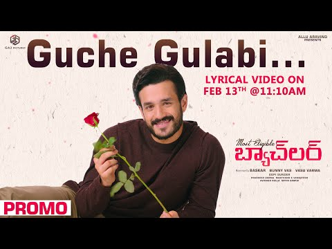 Guche Gulabi Song Release Promo