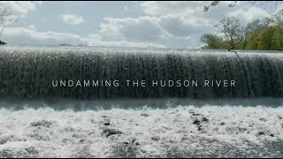 Undamming the Hudson River