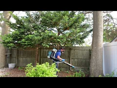 Reducing Ticks and Mosquitoes in Silverton, NJ