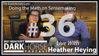 Bret And Heather 36th DarkHorse Podcast Livestream: Doing The Math On Sensemaking