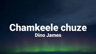 Chamkeele Chuze (lyrics) - Dino James Ft. Girish   - YouTube