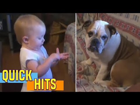 Baby Makes a Valid Argument - AFV