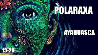 Polaraxa 13-20: Ayahuasca