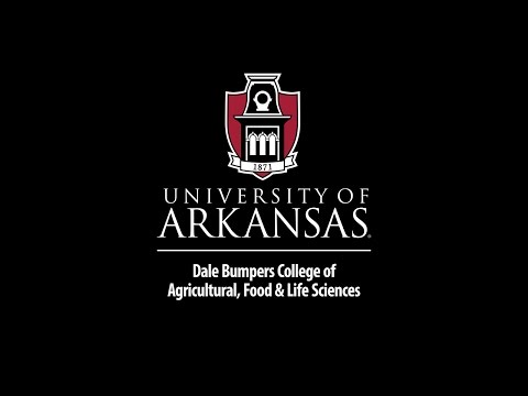 University of Arkansas - 2017 Dale Bumpers College of Agricultural, Food and Life Sciences