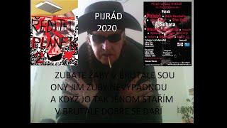 Video PIJRÁD-ZUBATÉ ŽÁBY V BRUNTÁLE SOU.