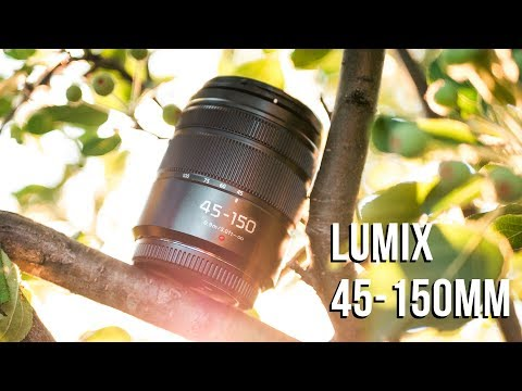 Panasonic Lumix 45-150mm Lens Review – $200 BUDGET Tele Zoom!!