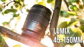 Panasonic Lumix 45-150mm Lens Review - $200 BUDGET Tele Zoom!!