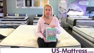 Sealy Stain Protection Mattress Protector By DOWNLITE