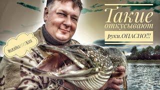 Рыбалка на можайском водохранилище осенью