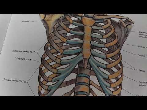 Вопросы и ответы лечения гипертонии