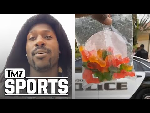 Antonio Brown Throws 'Bag of Dicks' at Baby Mama In Police Showdown