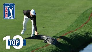 Top 10: Animal Encounters on the PGA TOUR