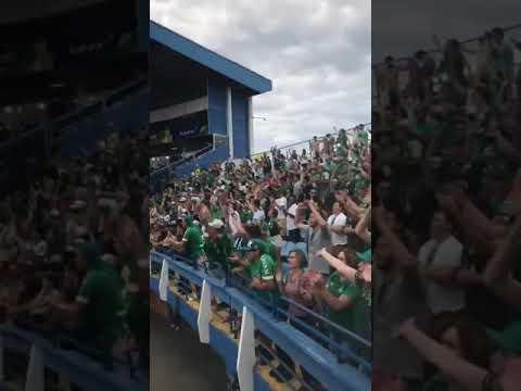 """VAMOS VAMOS CHAPE!"" Barra: Barra da Chape • Club: Chapecoense"