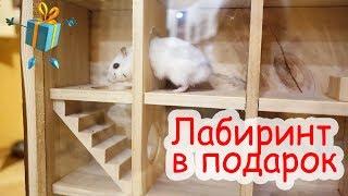 Подарки для животных на Новый год