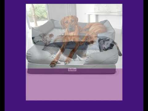 Orthopädisches Hundebett - gesund und dennoch bequem