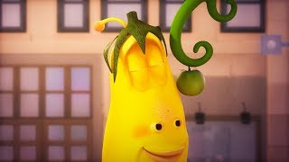 LARVA - GROWING FRUIT | Cartoon Movie | Cartoons For Children | Larva Cartoon | LARVA Official