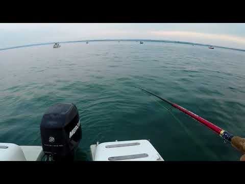 Avventure a pesca di un viaggio su pesca in video da pesca