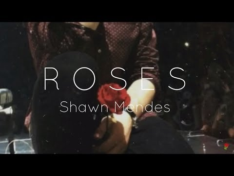 Roses (LYRICS) - Shawn Mendes
