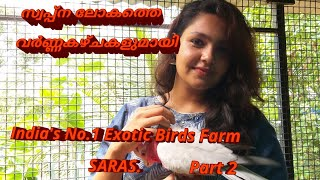 Exotic Birds Farm Visit @ Alappuzha Part II || Our Dream Factory