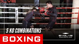 Boxing | 5 KO Combinations | Evolve University