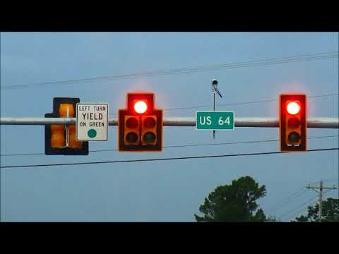 Eagle Traffic Lights