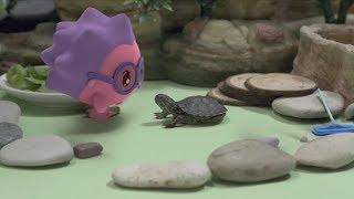Малышарики - Новые серии - Черепашка (Серия 96) Развивающие мультики для самых маленьких