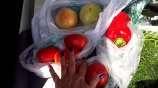 США. Ответить на ваши вопросы и купить овощи-фрукты.