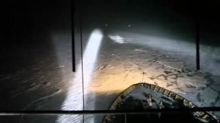Mashrooms - A Night On The Ship/Employee n.1