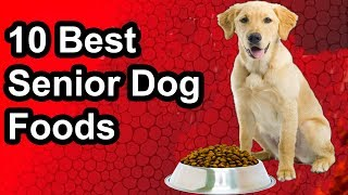 [Updated] 10 Best Senior Dog Food - The Best Senior Dog Food 2019