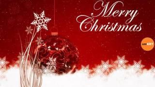 Christmas Card Sayings - Funny Christmas Card Sayings