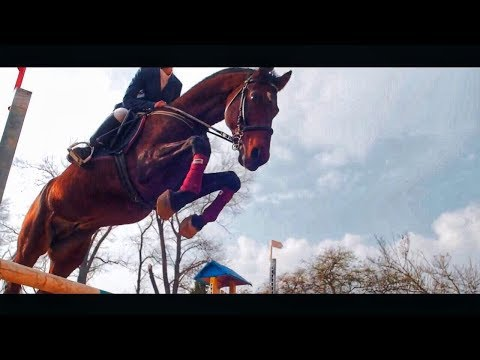 Тарас Миколайович, відео 7