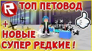 Роблокс СУПЕР ПЕТОВОД + УЛЬТРА РЕДКИЕ ПЕТЫ в СИМУЛЯТОР ПИТОМЦЕВ = ROBLOX по русски