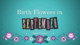 Korean Birth Flowers for September