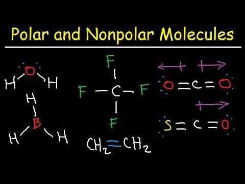 Polar and NonPolar Molecules: How To Tell If a Molecule is Polar or Nonpolar