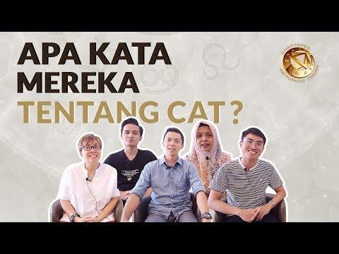 APA KATA MEREKA TENTANG CAT?