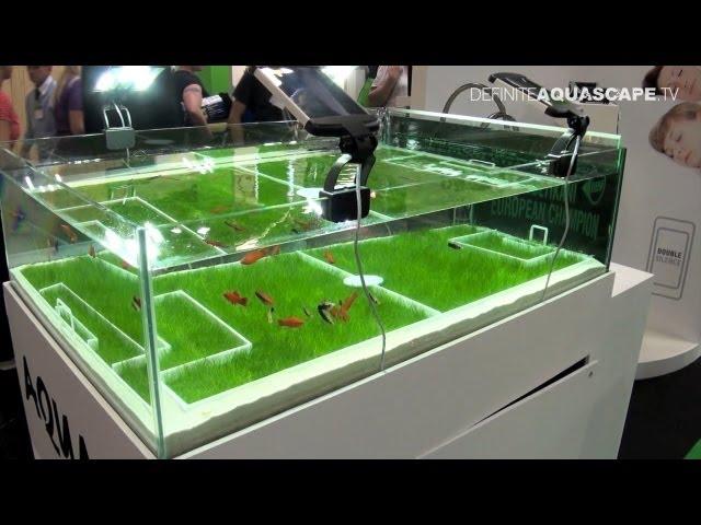 Akwaria targów InterZoo 2012 - część 1