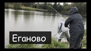 Топ платная рыбалка в подмосковье лагуна