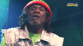 THE WAILING SOULS live @Main Stage 2014